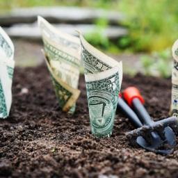 No Money, No Startup